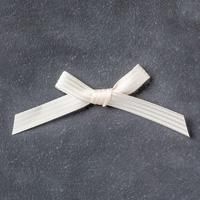 "Very Vanilla 3/8"" (1 Cm) Stitched Satin Ribbon"