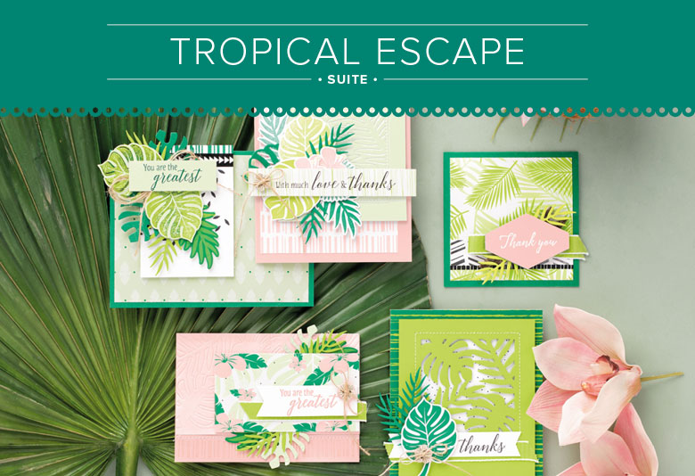 Making Memories with Michelle's July Card Club features the Tropical Escape Suite. Register by 7/15 for you kit To Go, or attend in person on 7/30. www.MakingMemorieswithMichelle.com Stampin' Up! © 2018