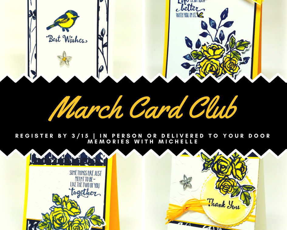 PicturCard Club features 8 cards (2 each of 4 designs) plus products you need to complete your project. Attend in person, or have it delivered to your door. #craftwhenyouwant. Making Memories with Michelle.e
