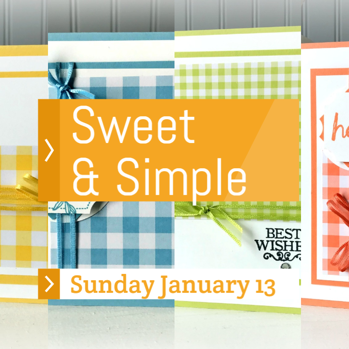 www.MakingMemorieswithMichelle.com My Sweet & Simple card class is perfect for both the beginner and advanced crafter.  January's card class makes 10 All-Occasion cards (2 each of 5 designs) using the Brand New Gingham Gala Designer Series Paper and the Darling Label Punch Box.  In Person and To Go Options.