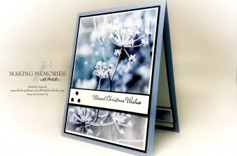https://www.stampinup.com/ecweb/products/101018/feels-like-frost?dbwsdemoid=2148568